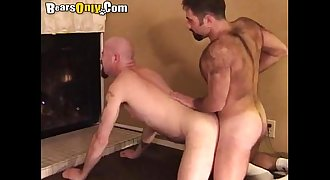 Hairy Daddies Loves Doggy Style Pummeling