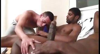 Black Gays Brasil...